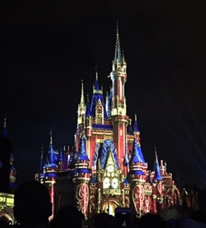 Disney Happily Ever After 6